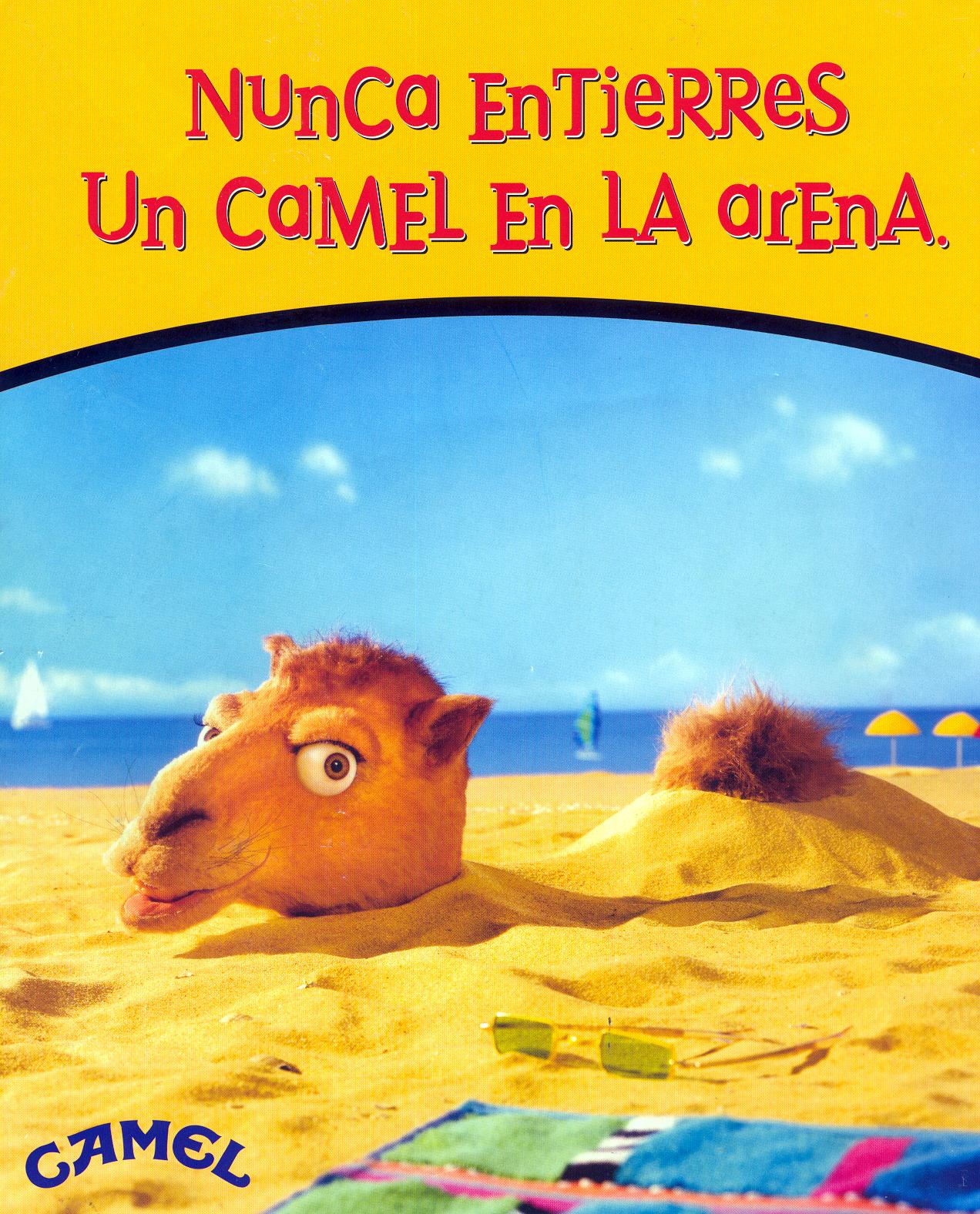 Camel_06