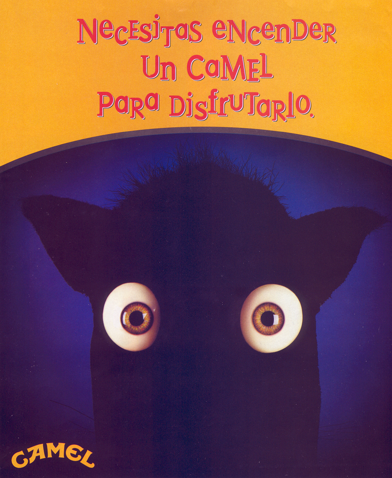 Camel_12