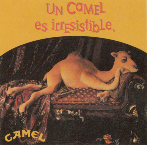 Camel_17
